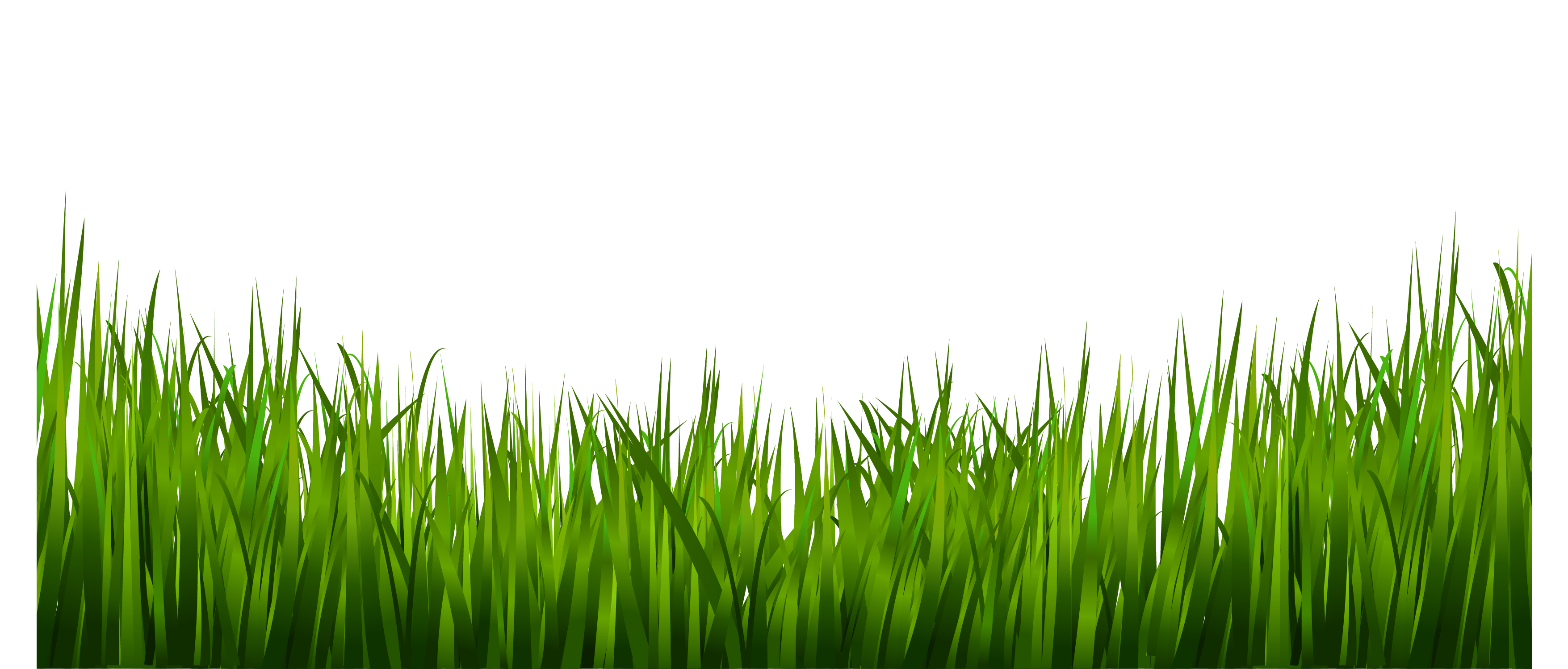 grass-png-images-live-ornament-tool-png-only-4